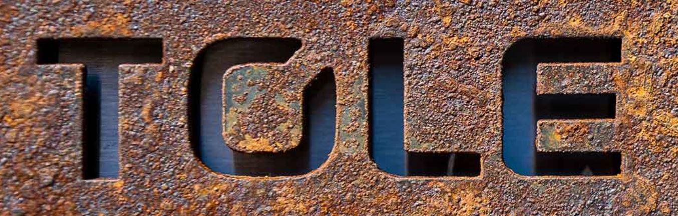 Tolo-Logo